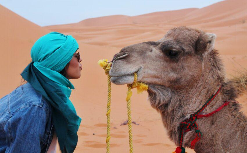Kamelen-calculator